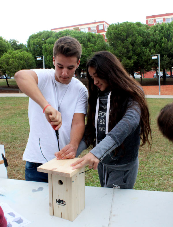 CAS-Nest-Box-Building-Montgat-2018(3)